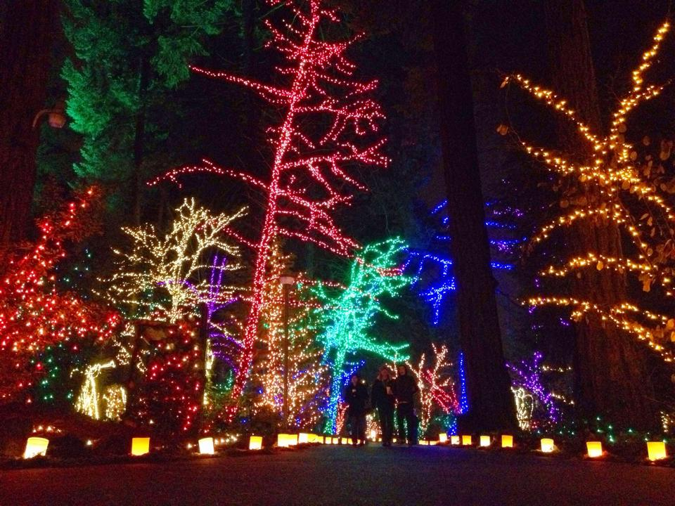 Grotto festival of lights coupon